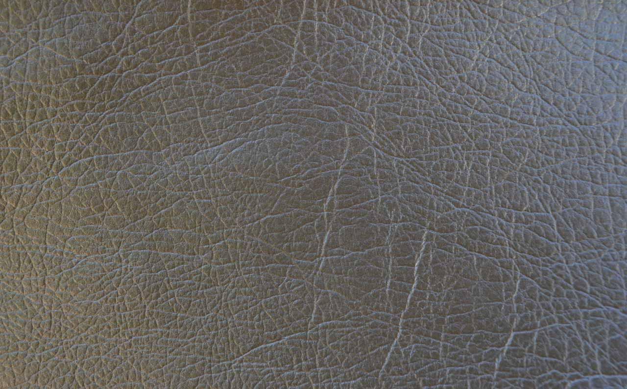 Искусственная кожа Reinbov gold