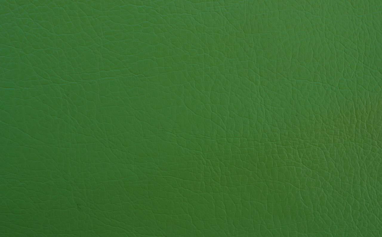Искусственная кожа Reinbov Light Green