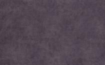 Goya Dimrose