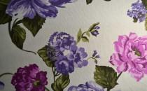 Provence 9023 V1