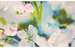 Вдохновение весны