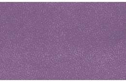Elva violet