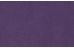 Glance Lilac
