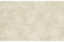 Goya Bone