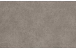 Goya Desert