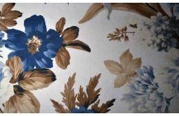 Lilium beige-blue