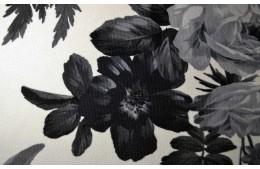 Lilium grey
