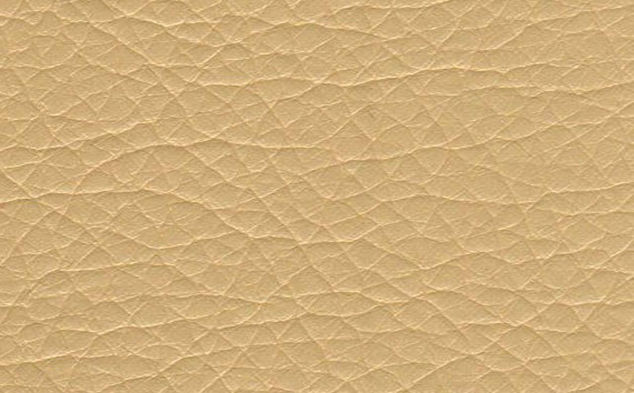 Кожзам Zeus 003_1 dark beige