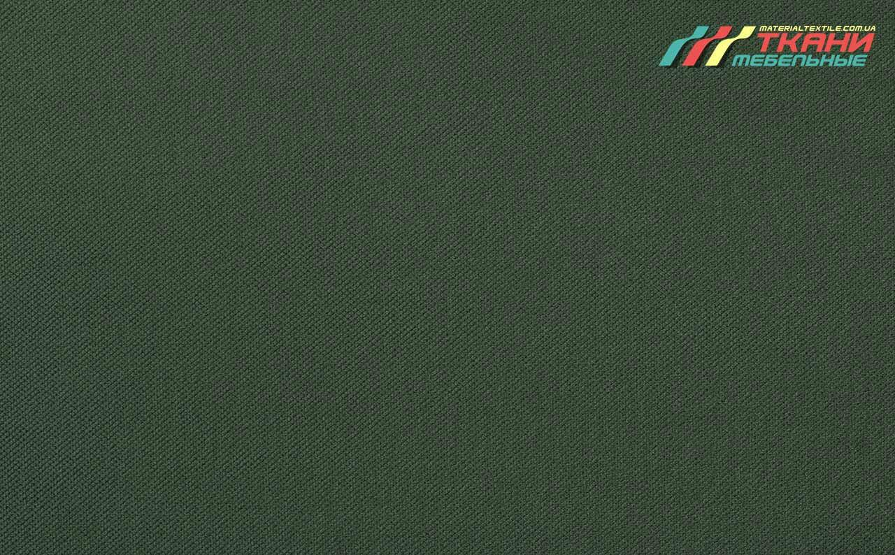 Amigo Green