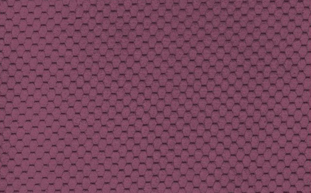 Citus Lilac