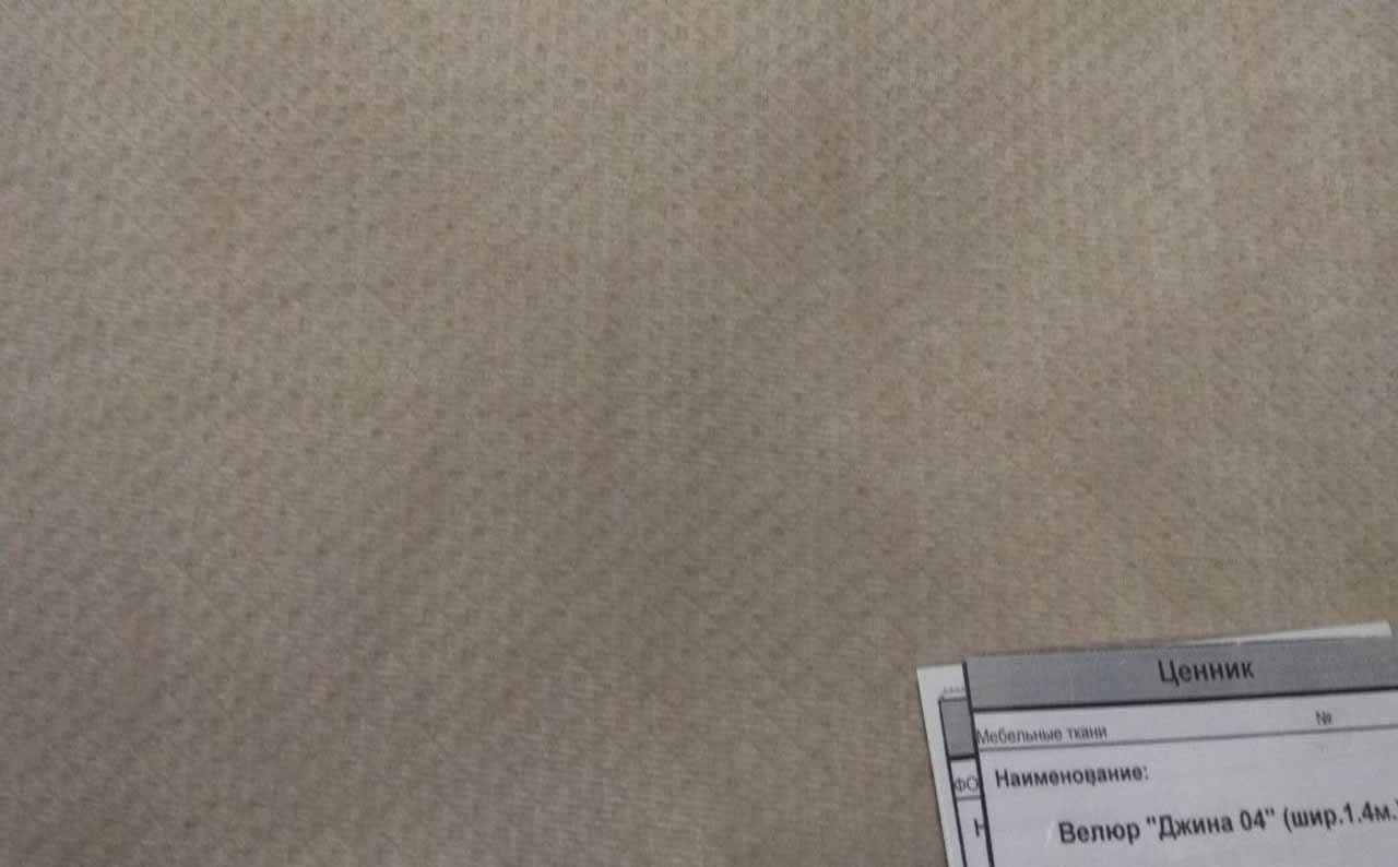 Мебельная ткань велюр Dzhina 04