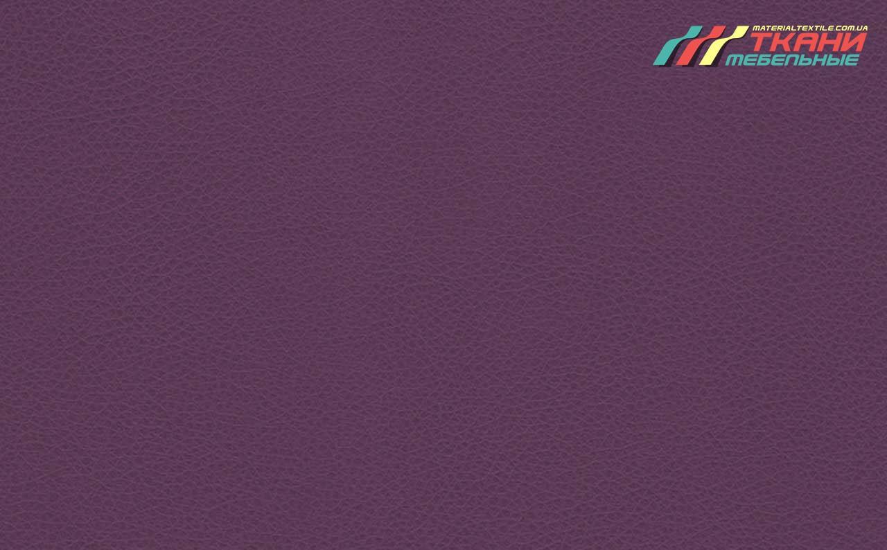 Marvel Purple