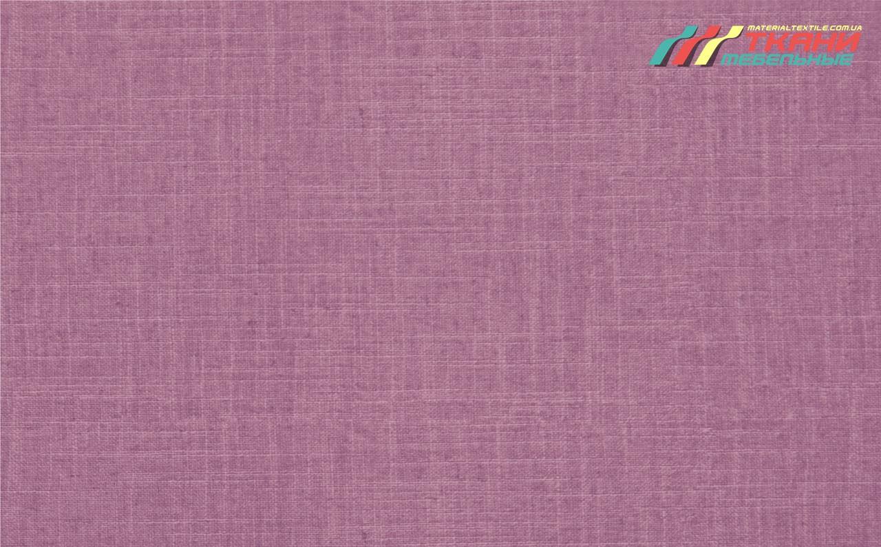 Oslo Purple