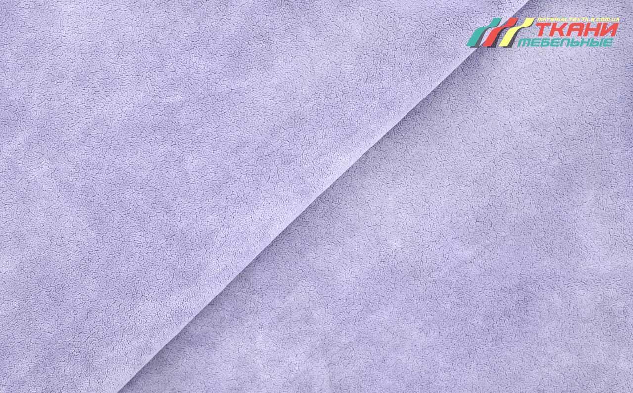 Verso 11 Violet