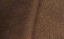 Antelop 085