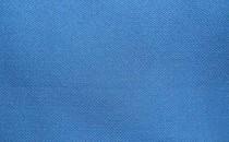 007 Синий автовелюр