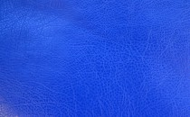Reinbov Royal Blue