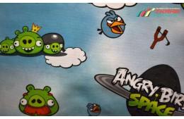 Children Angry Birds