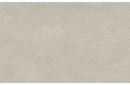 Antares Silver