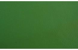 Reinbov Light Green