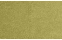 Genezis Mustard